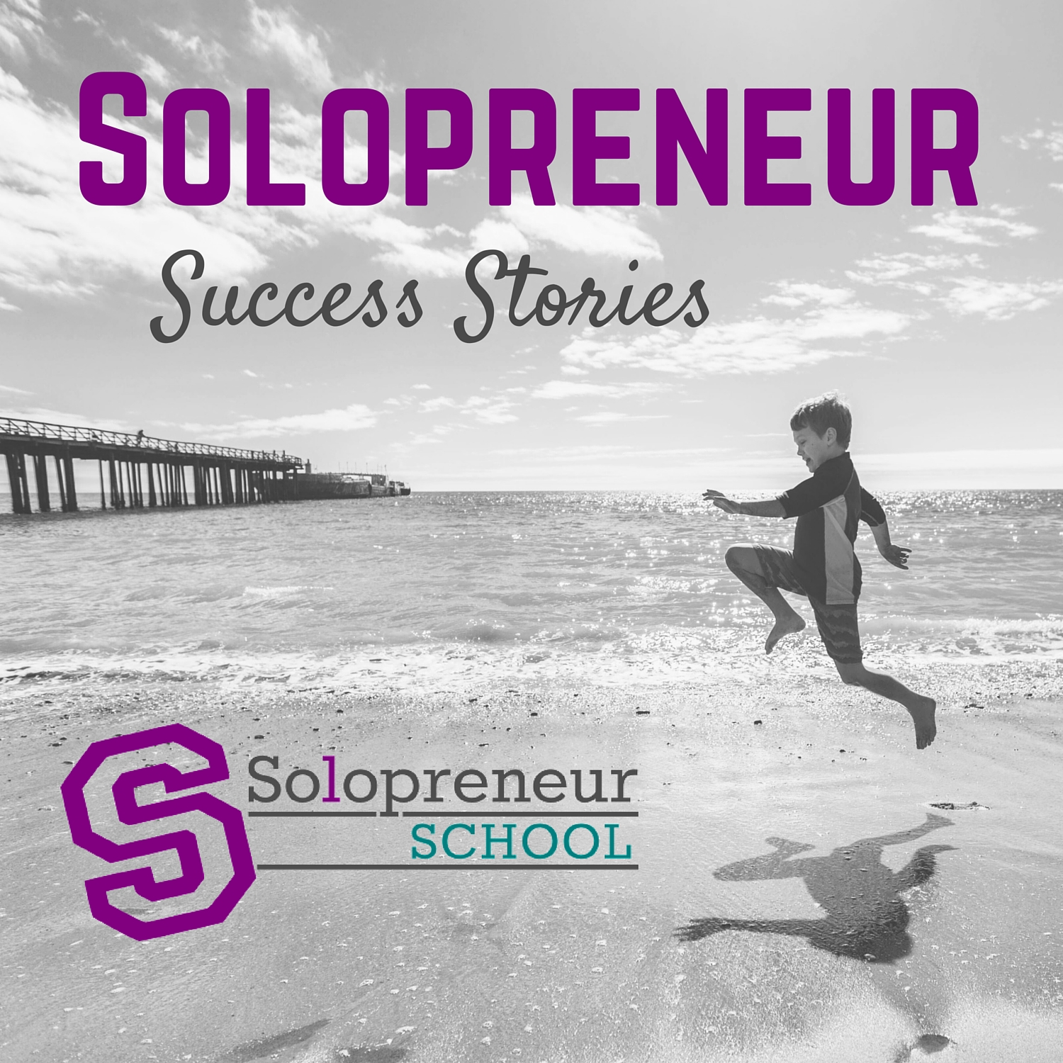 Solopreneur Success Stories